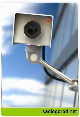 Видеонаблюдение поможет справиться с непрошенными гостями