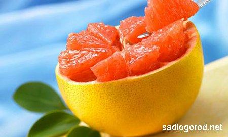 Грейпфрутовая диета – действенное средство