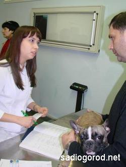 Ветеринары спешат на помощь