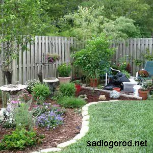 Сад или огород?