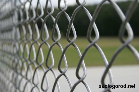 Забор из сетки-рабицы для дачного участка