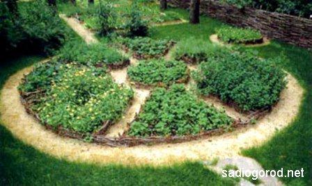 Выбираем планировку сада
