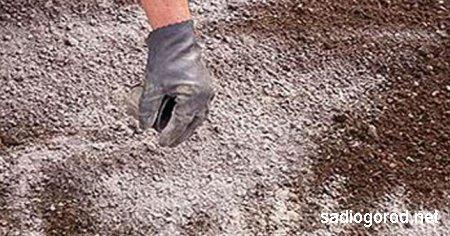 Известкование почвы на дачном участке